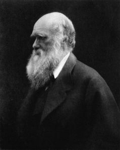 Charles Darwin, photographed by Julia Margaret Cameron. 1868