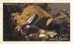 Plate 3: Fox in Hen House. Valerie Herron, 2014